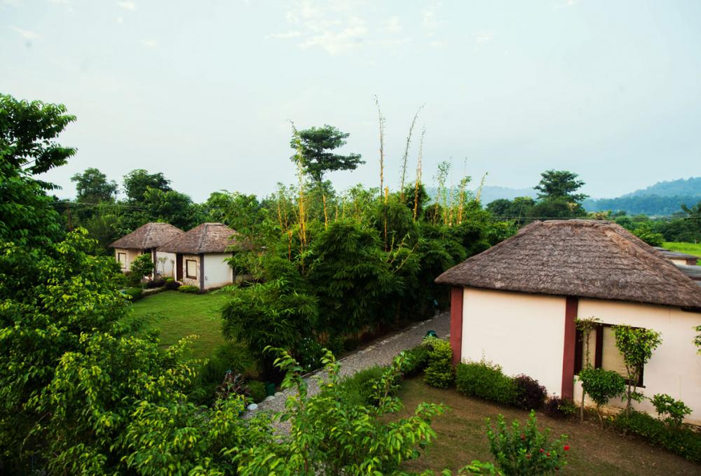 1 Night Package Machan Resort Corbett