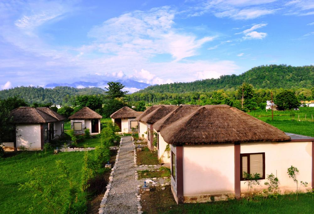 1 Night Package Machan Resort Jim corbett
