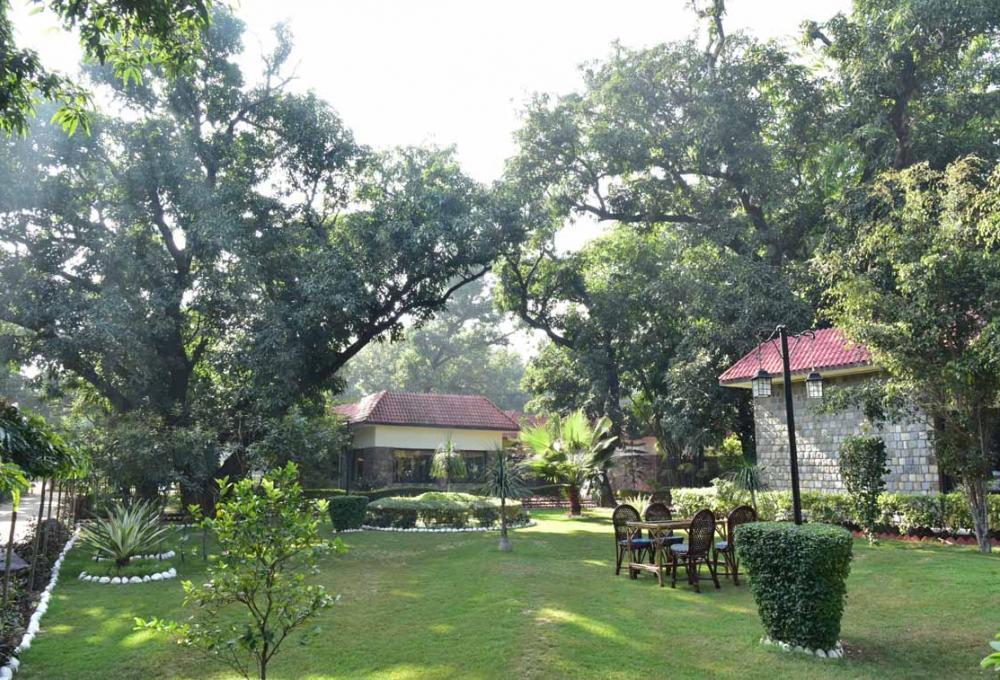 2 Nights 3 Days Package Jungle Leela Resort In corbett