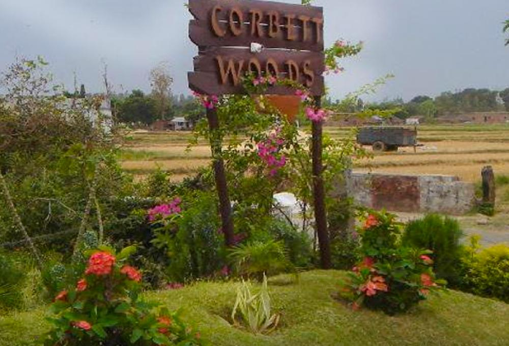 Wood Resort