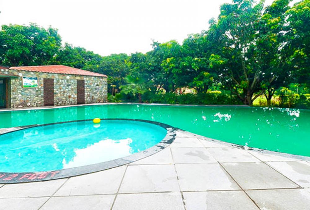 Swimming pool Iris Resort