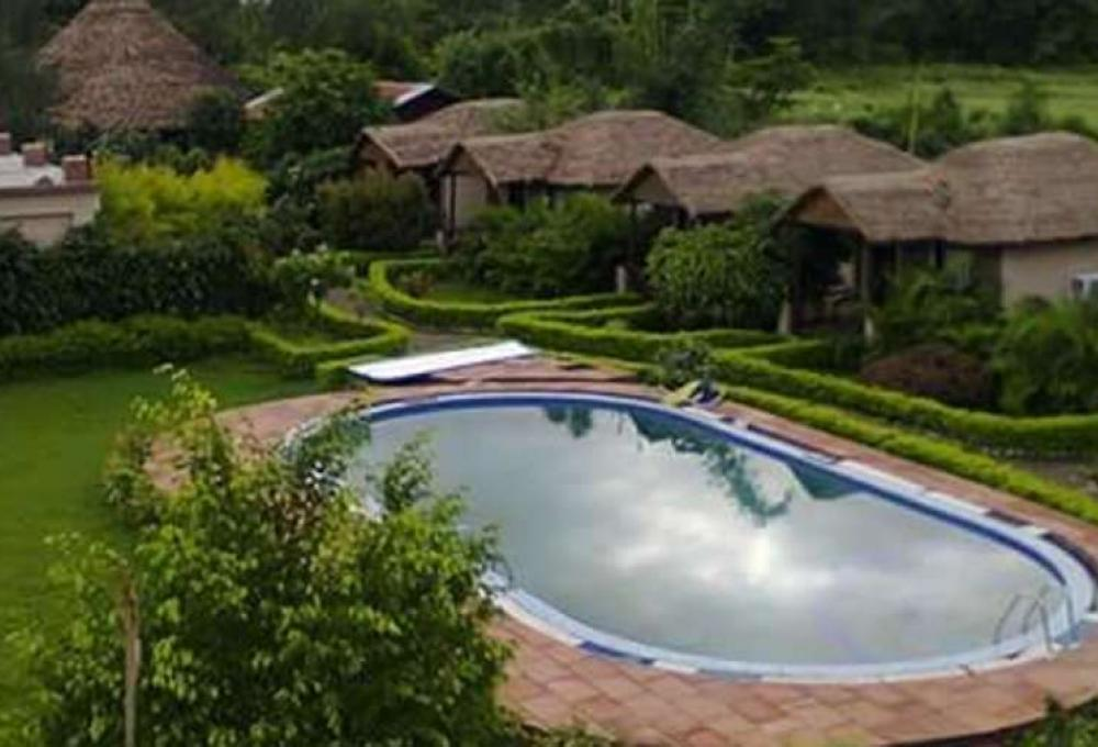 Swimming pool Alaya Resorts