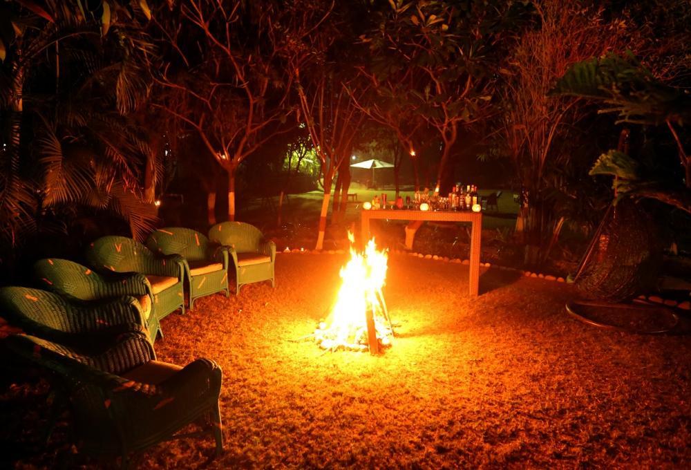 Bonefire in Night