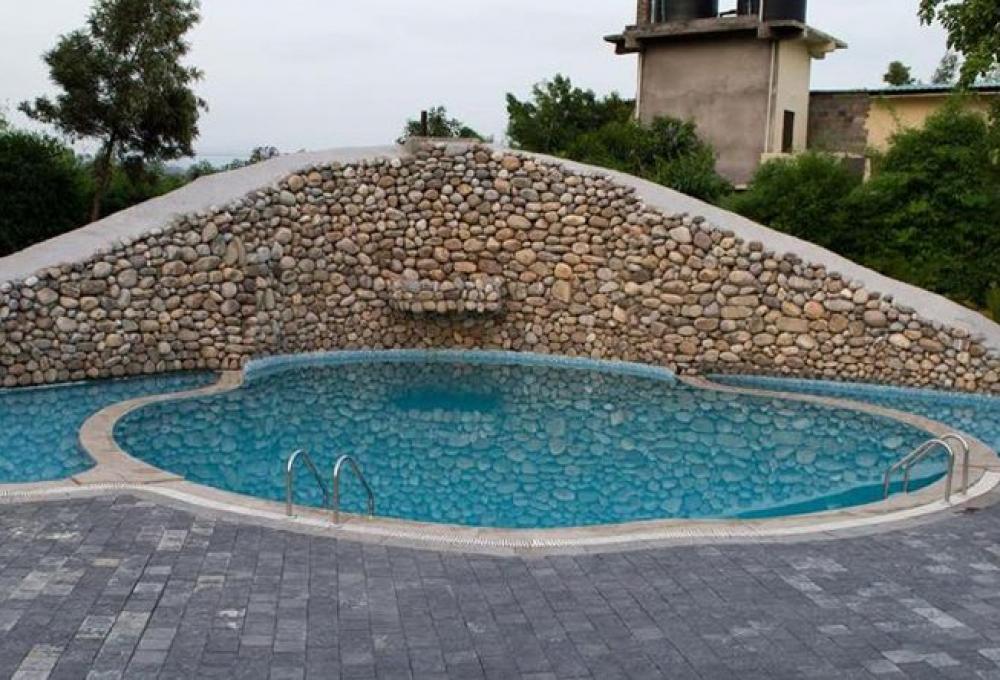 Swimming Pool the roar resort