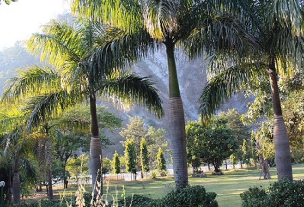 Garden View Solluna Resort