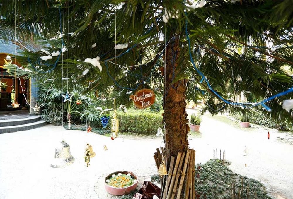 Solluna Resort Ramnagar