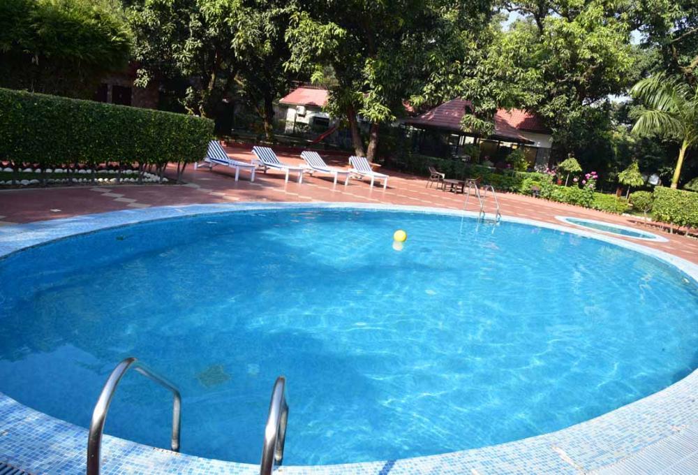 Swiming Pool Jungle Leela Resort