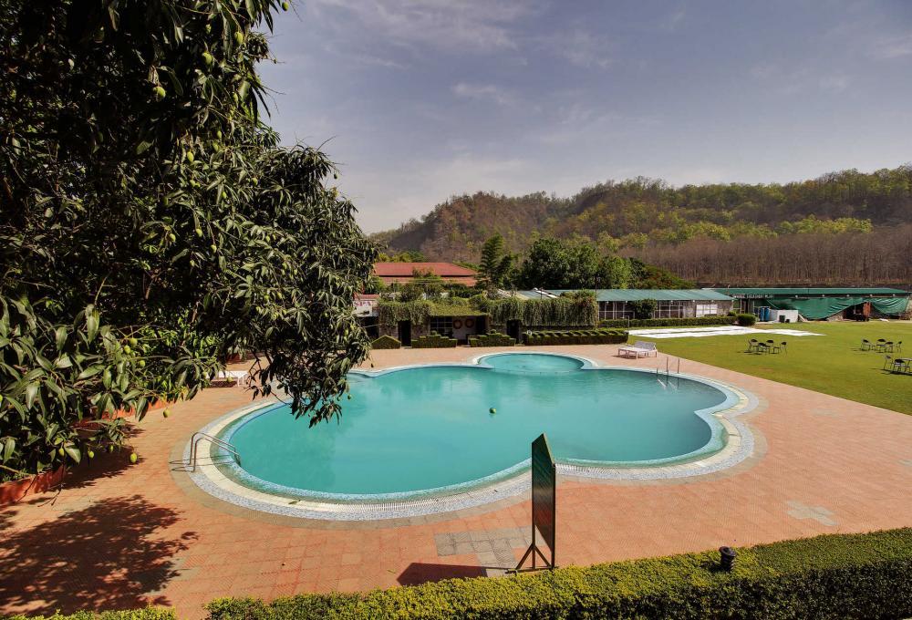 Swiming Pool Wood castle resort