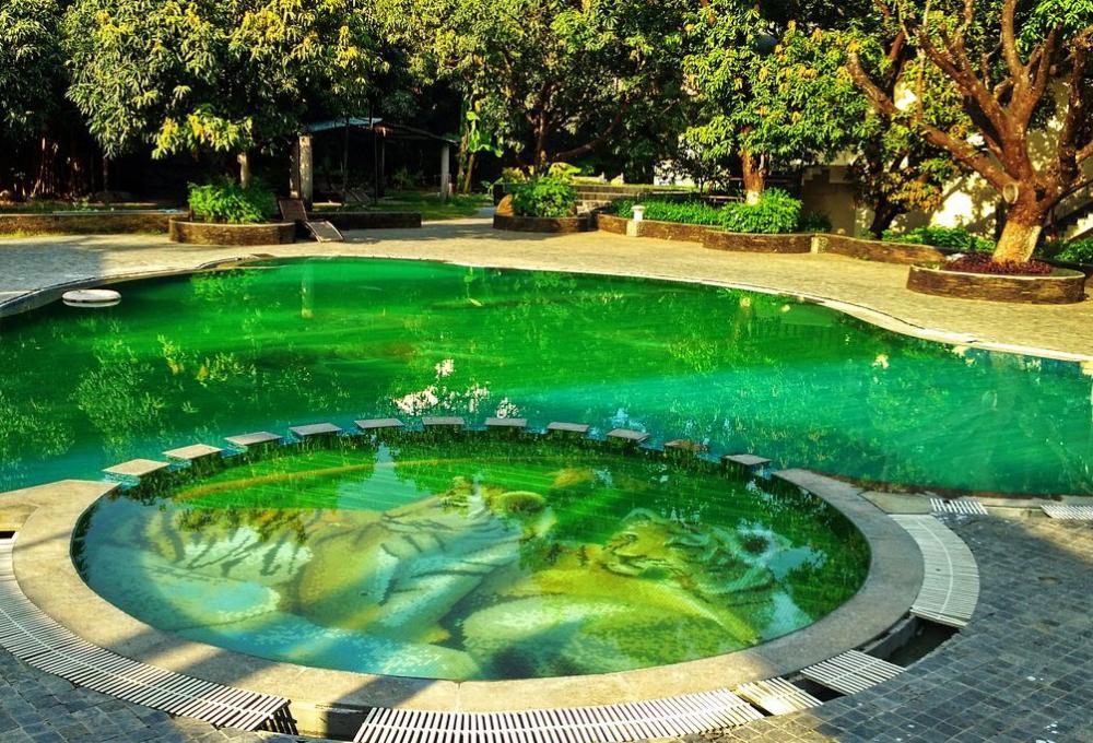 Swiming Pool Hridayesh Resort