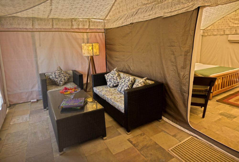 The Golden Tusk Luxury Tent