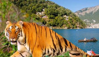 Corbett Nainital Package