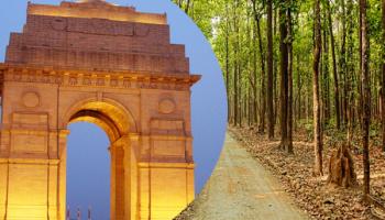 Delhi to Corbett 1 Night Package